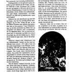 fut1996nr3-010