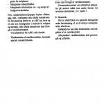 fut1997nr4-019